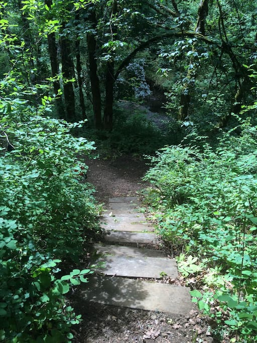 Steps leading down to the fire pit and creek.