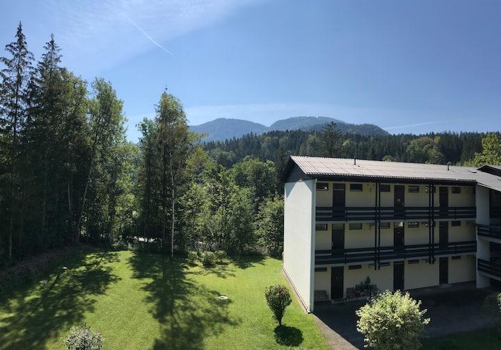Kuschelige Alm-Wohnung rim Salzkammergut-Bergblick