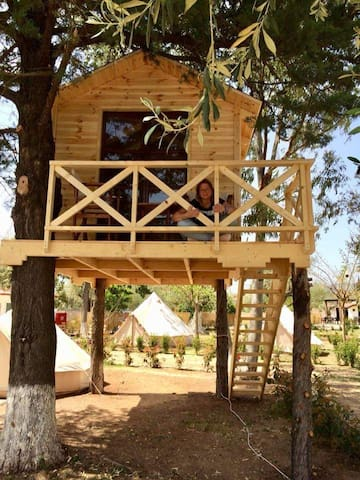 Treehouse with beach view!