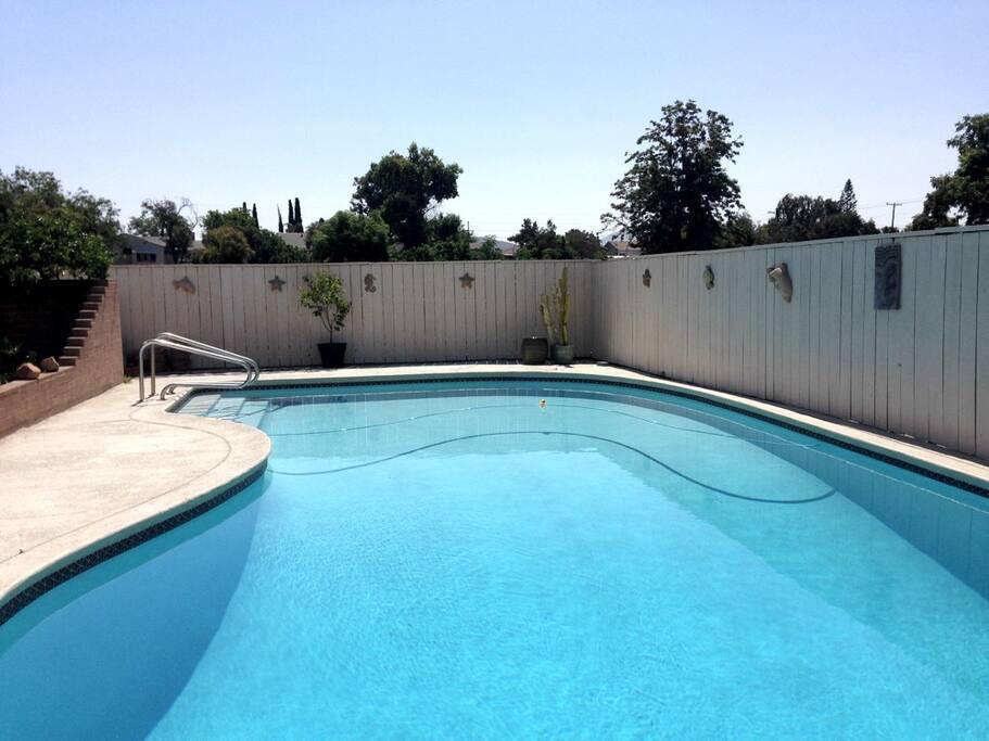 A pristine saltwater pool.