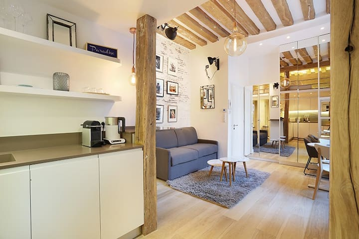 Sublime apartment in le Marais