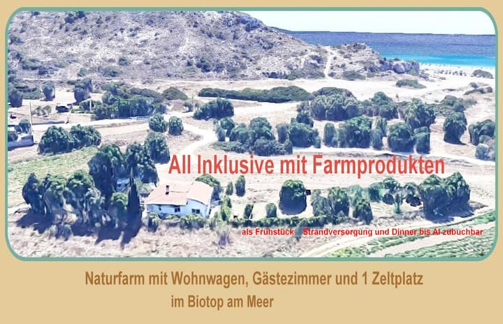 Naturell farm, beach 300m, organic full board add