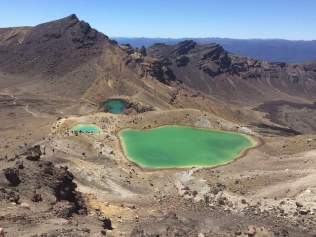 National Park Village. Tongariro - National Park - Hus