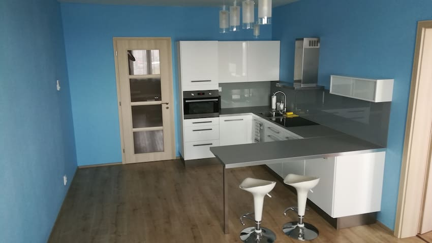 Big apartment Rezidence Eliska near to the center