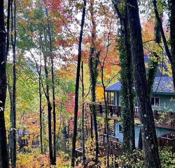 North Georgia Mountain Cabin, Sleeps 10-12