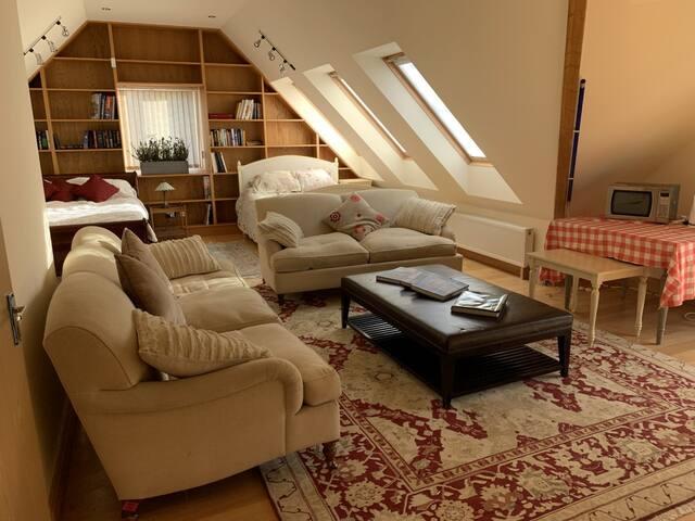 Stunning attic loft style studio