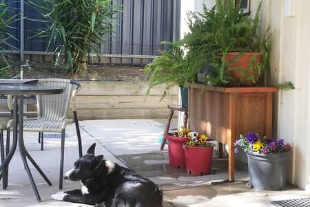 Algona Hideway-Pet friendly. No extra cleaning fee