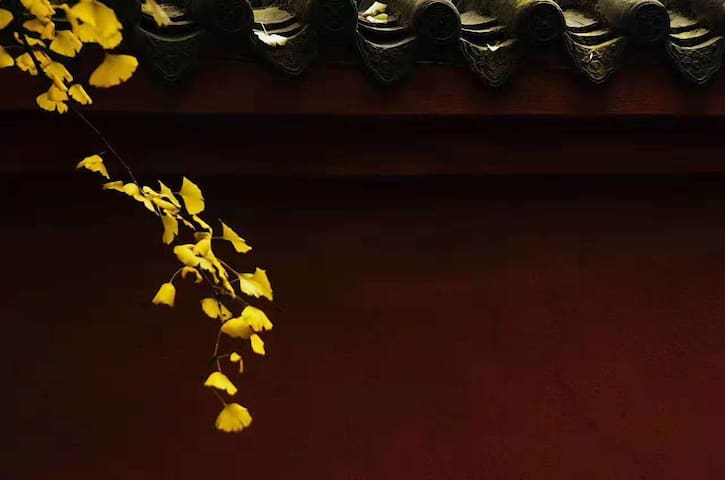 曲阜【九夷居·尧曰】城墙脚下距离三孔最近民宿 孔庙近在咫尺 独门独卫 标准大床
