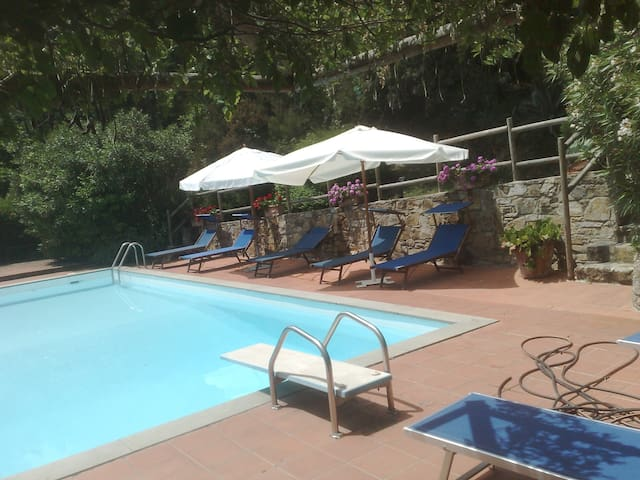 Lovely secluded country Cottage - Lucca - Xalet