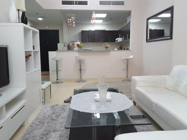 Luxury one bedroom apartment for one month rent