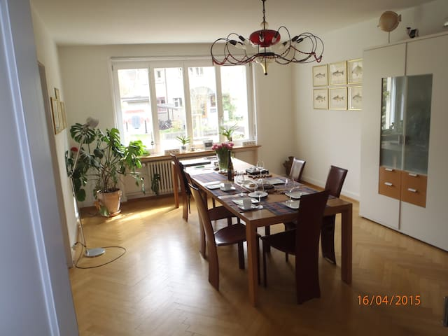 Spacious house near park area, ArtBasel & Messe - Riehen - Ev