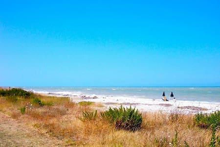 splendido piano terra a 20 mt da mare e pineta - Pineto - Pis