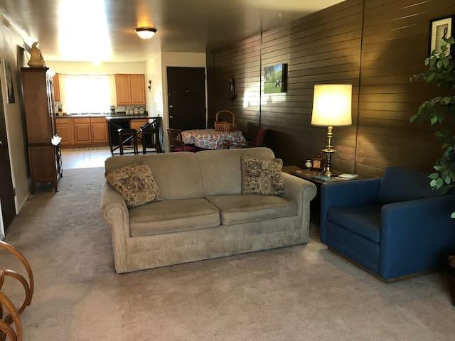 Homey One Bedroom Apartment