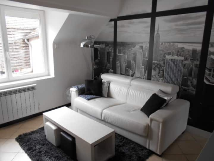 AGREABLE STUDIO CENTRE DE SULLY SUR LOIRE