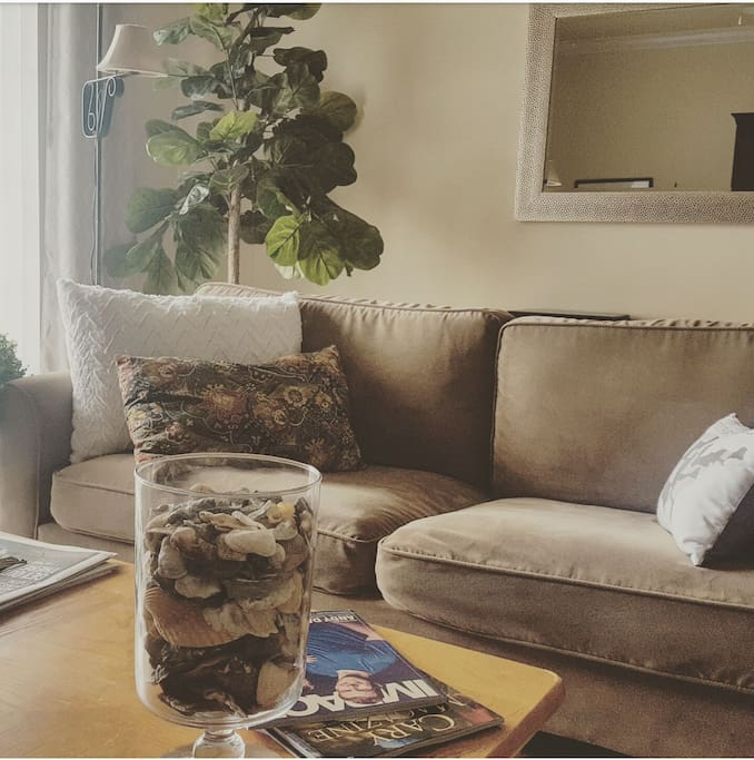 Rooms For Rent In Raleigh Nc Area