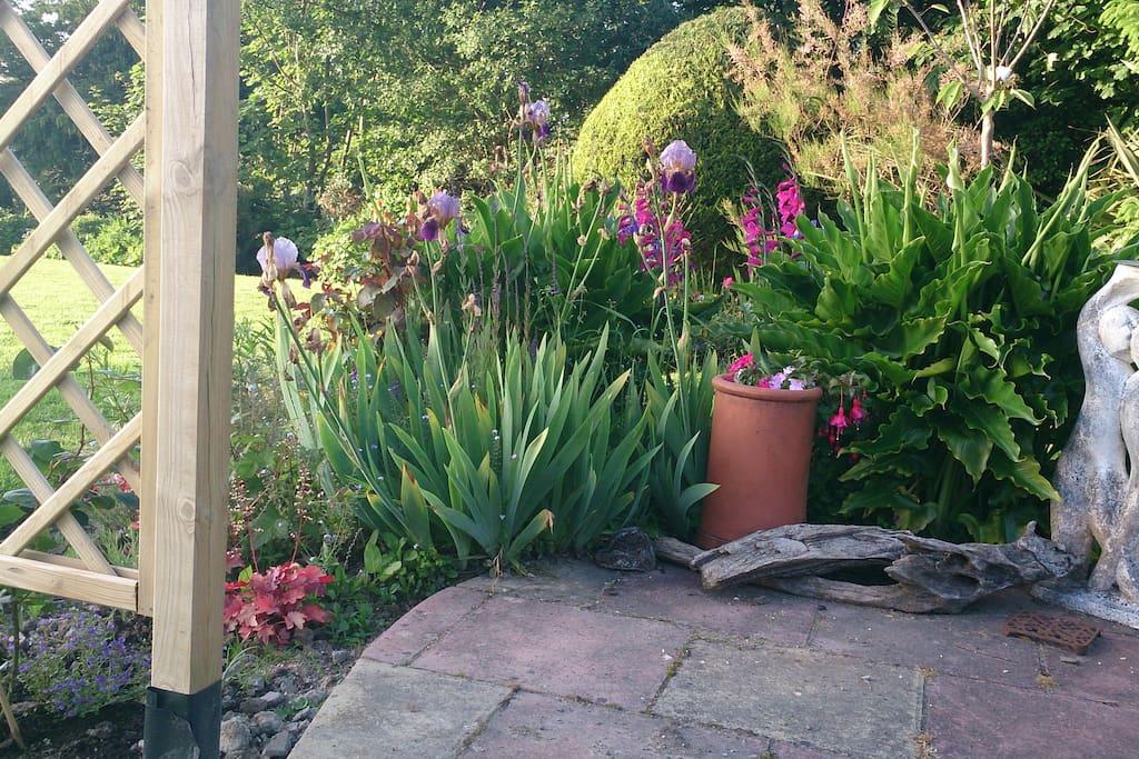 the patio front garden