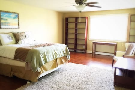 Entire Apt -Only $50 for Overnight Single-Occupant