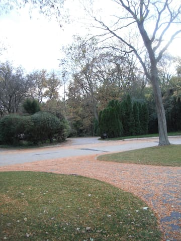 Driveway Across from Ravine
