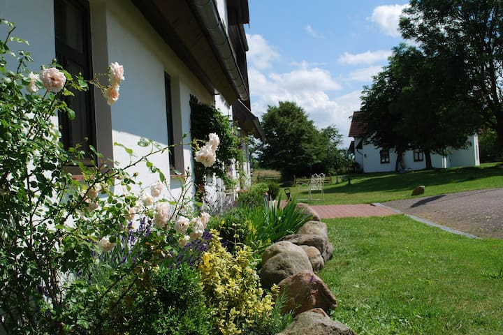 Spacious Apartment in Dargun Mecklenburg with Swimming Pool