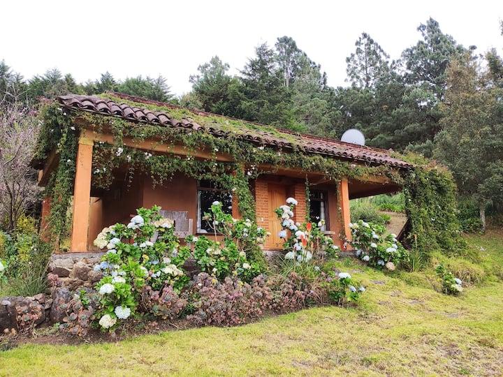 Cabaña en Las Nuves