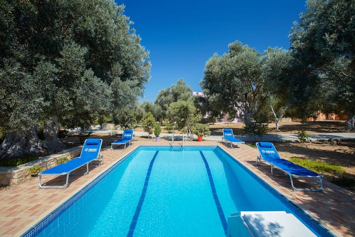 "The ""Olive Grove"" pool villa (Estia villa)"