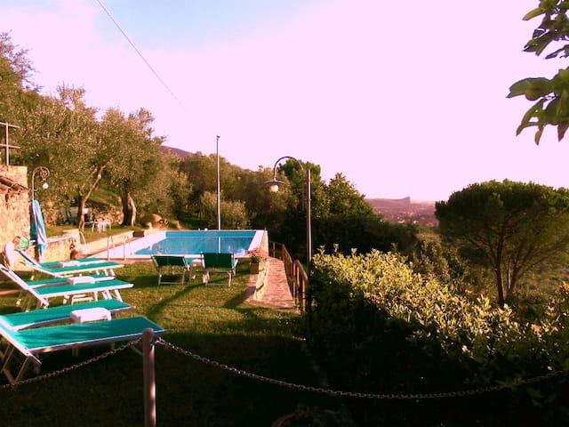 Casa Vacanze Il Pendolino - Calci - Apartemen