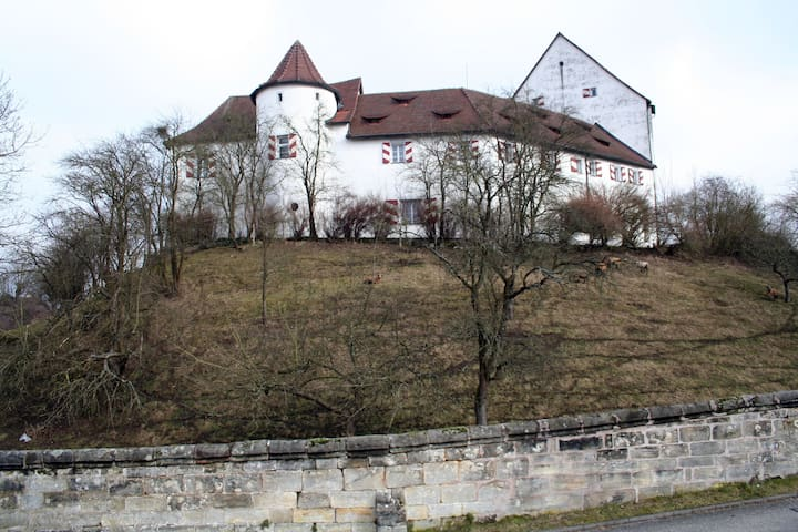 Fe-Wo sehr gut geeignet für Messegäste Nürnberg - Henfenfeld - Leilighet
