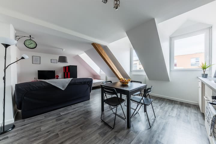 Large & Cosy Studio - Downtown / Train Station