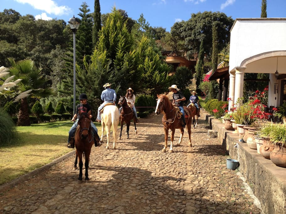 Horses and a guide are available for rent  if you want to explore Patzcuaro's surroundings on horseback. Please let us know ahead of your stay if you would like this option.
