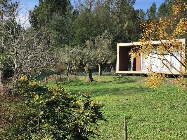 Adore Portugal Bungalow Natureza & Vista Montanha