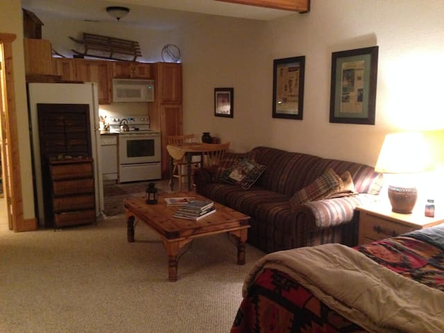 Studio apartment with full kitchen and bath.  Furnished with a queen bed and queen sofa bed.