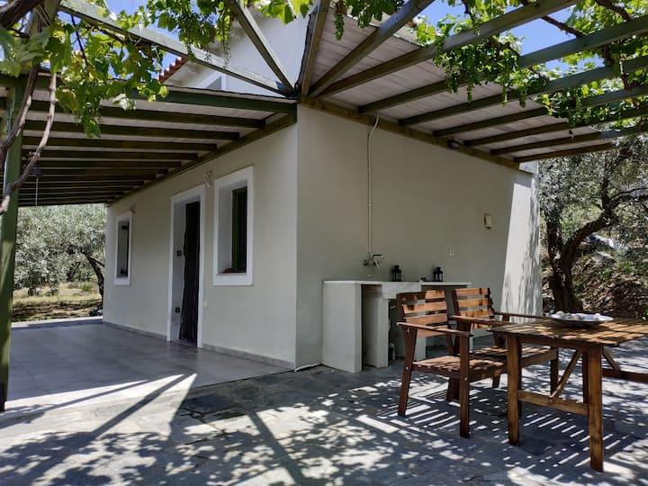 Margarita's dream house