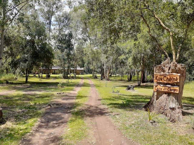 PROMOCIONES EN KAU-CHAINK Un día de campo