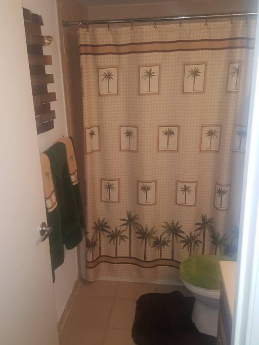 Bathroom (Bath & Shower)