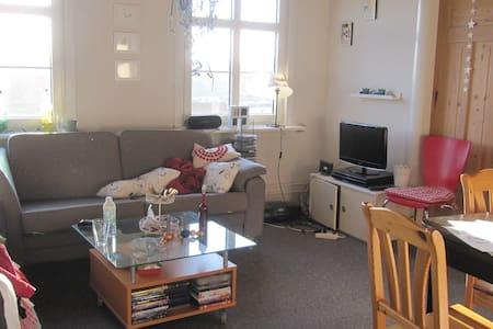 Cosy apartment - Haderslev