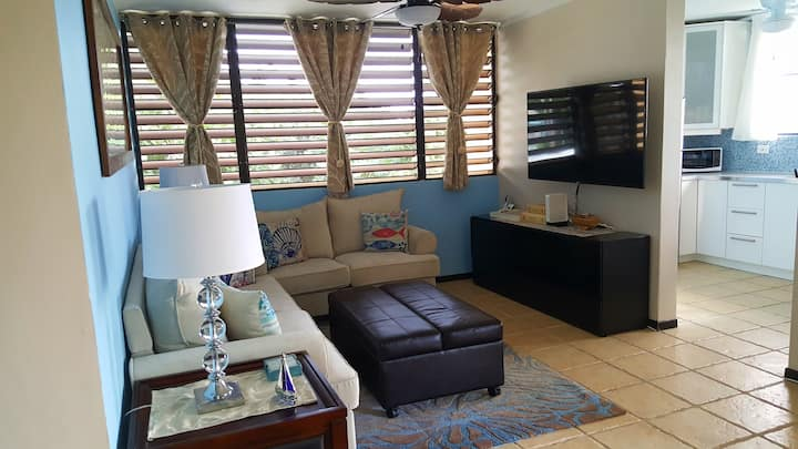 Fully Air-conditioned Condo Beach Front Penthouse