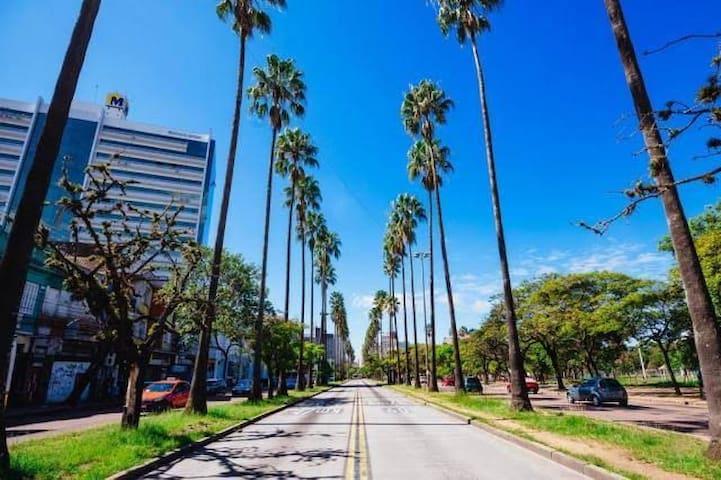 Avenida Osvaldo Aranha com comércio local e transporte para toda a cidade.