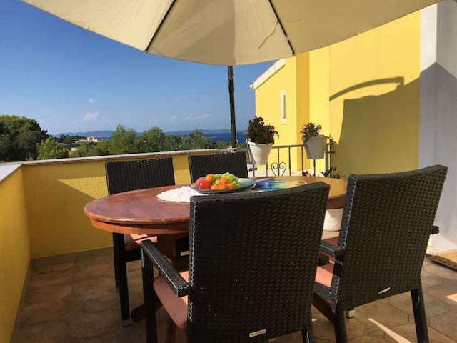 Two bedroom apartment with terrace and sea view Sali (Dugi otok) (A-16469-a)
