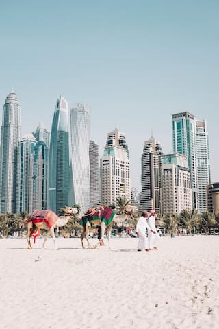 Reza's Guide to Dubai