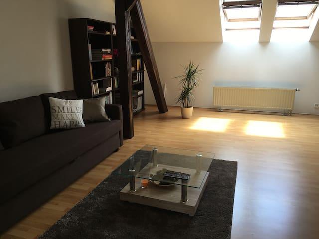 loft-style apartment Újezd - Praha - Daire
