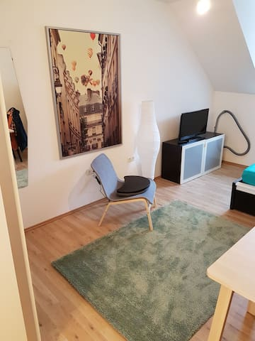 1 Room Appartement in City awesome :-)
