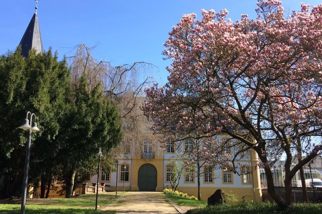 WHU Marienburg, only 2 minutes away