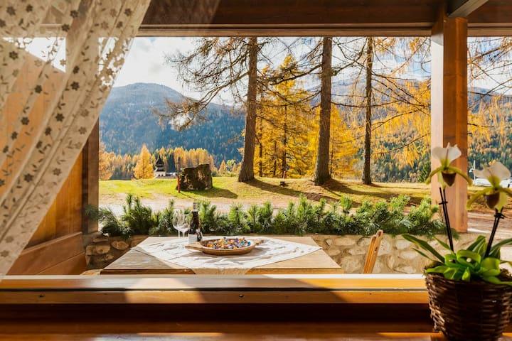 I Larici le Dolomiti con passione