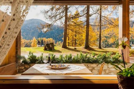 """""""I Larici"""" la gioia nel ♥ delle Dolomiti."""