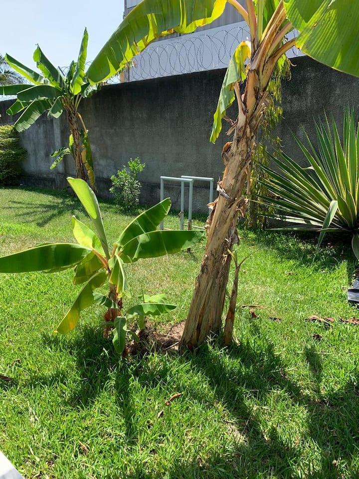 Appartement meublé, 2 chambres au RDC avec jardin