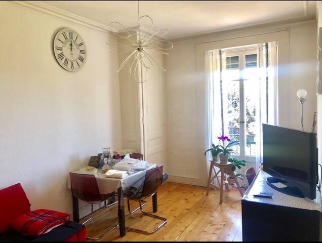 Appartement Plainpalais - proche du centre ville