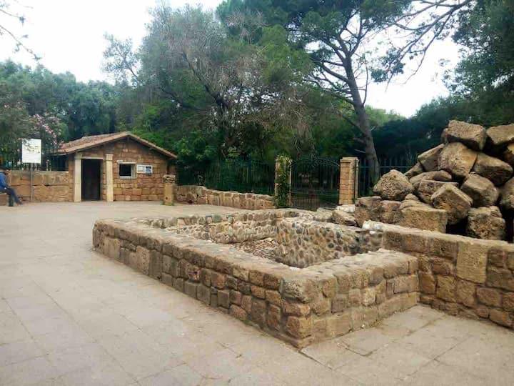 Le coin magique des Ruines romaines