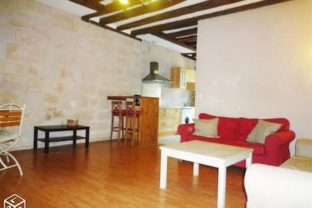 Beautiful appartement center of Tours Loire Valley - Tours