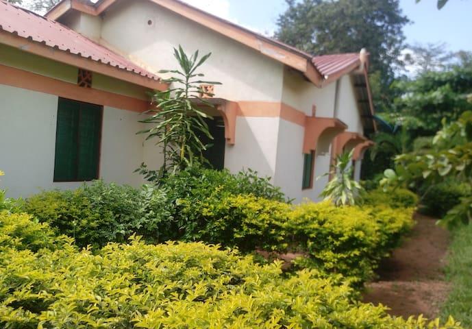 Shimba Comfort home