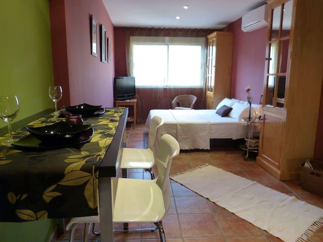 Apartamento-Estudio Atico con terraza - Candeleda - Apartemen